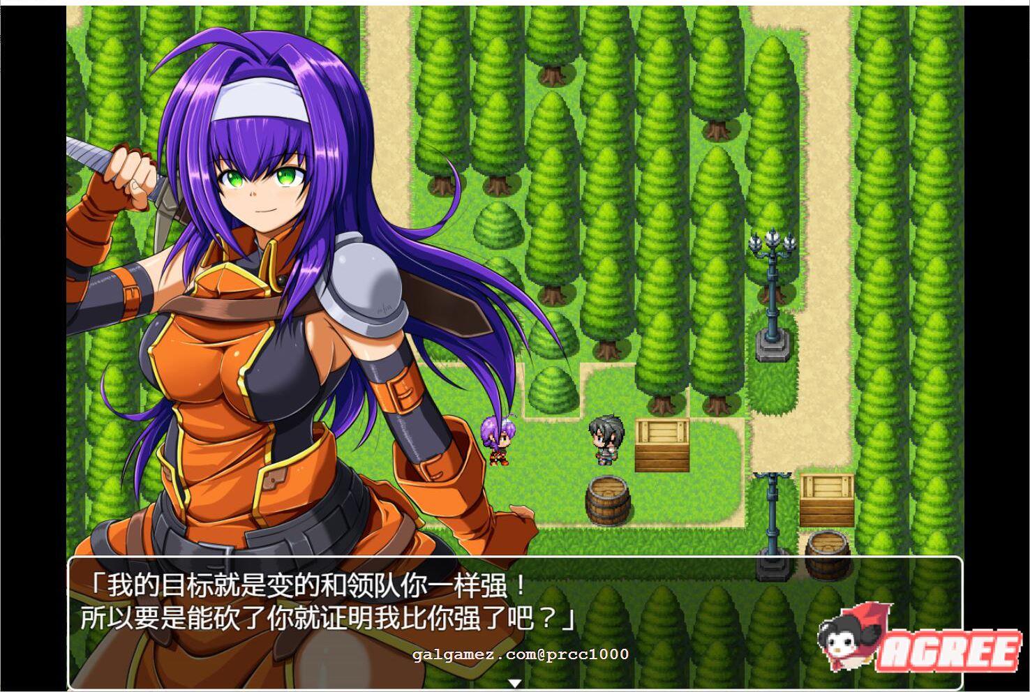 [RPG汉化全动态]火焰O章-从支援S开始的物语1+2 完整精翻汉化版[800M] 8